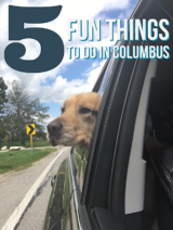 5 Fun Things to Do in Columbus. Everything from amazing brunch spots, trendy food trucks, classic German Village, beer-cades, and gorgeous parks! showmetheyummy.com