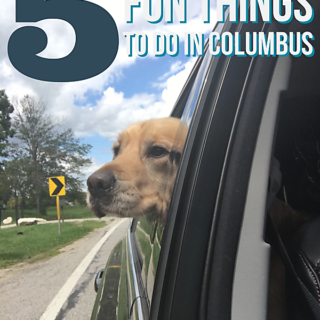5 Fun Things to Do in Columbus. Everything from amazing brunch spots, trendy food trucks, classic German Village, beer-cades, and gorgeous parks!showmetheyummy.com