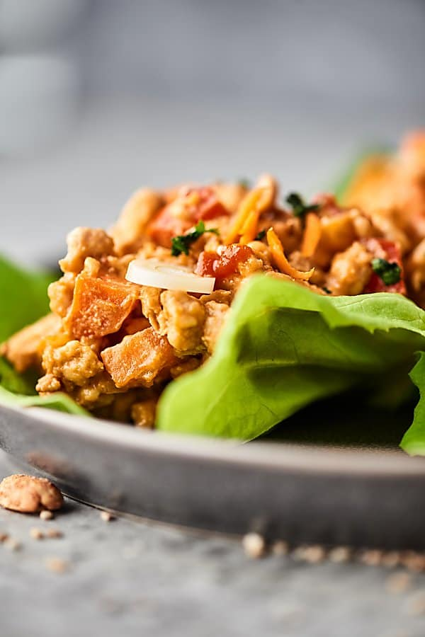 Vegan Thai Food Recipes