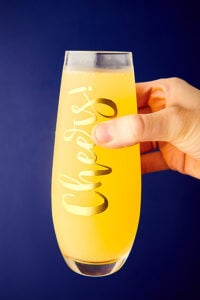 mimosa glass held
