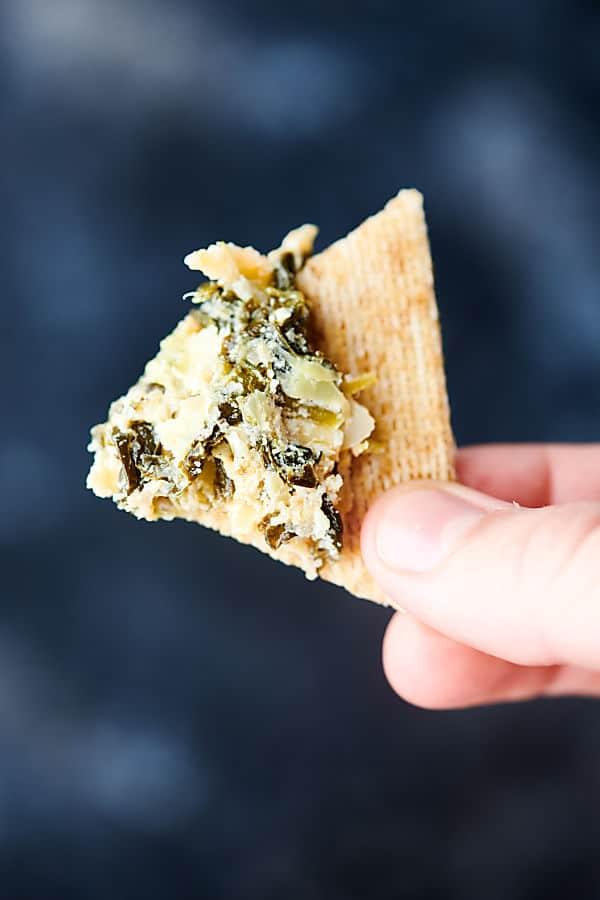 cracker with spinach artichoke dip held