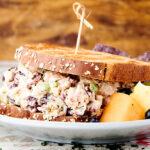 cranberry chicken salad sandwich on plate