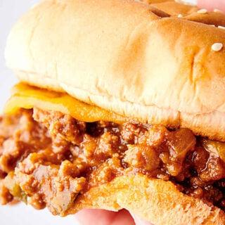 sloppy joes sandwich held
